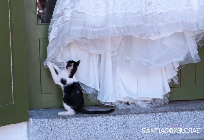 santiago-bargueño-fotografia-boda-palacio-hoyuelos-029